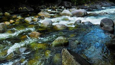 Photograph - Running - Mossman Gorge, Far North Queensland, Australia by Lexa Harpell