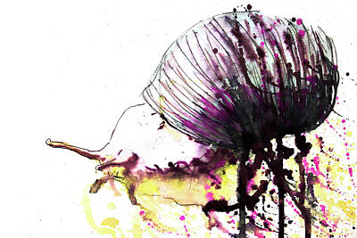 Drawing - Running Snail by ZileArt