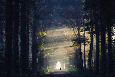 Photograph - Running To The Light by Edwin Mooijaart