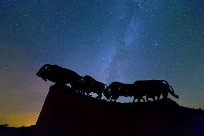 Bison Photograph - Running Under The Milky Way by Stephen Stookey
