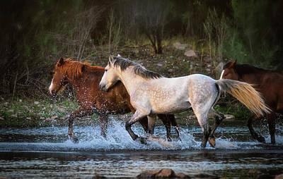 Photograph - Running Wild On The River  by Saija Lehtonen