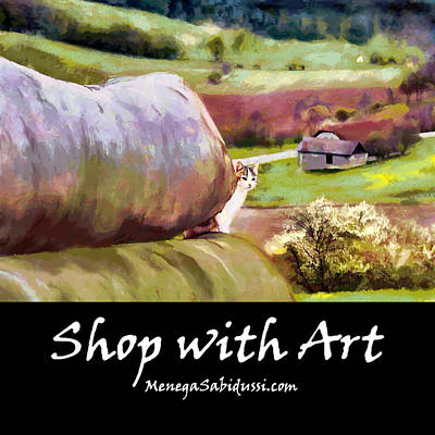 Painting - Rural Austria - Shop With Art by Menega Sabidussi
