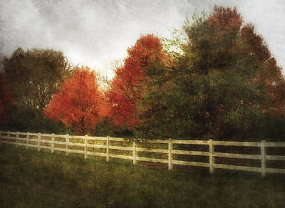 Photograph - Rural Autumn by Cynthia Lassiter