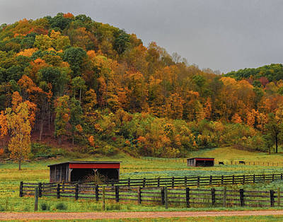 Photograph - Rural Beauty In Ohio  by Richard Kopchock