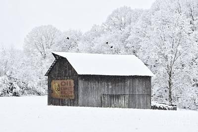 Photograph - Rural Carolina Winter by Benanne Stiens