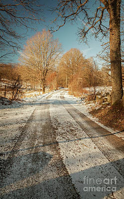 Photograph - Rural Country Road by Sophie McAulay