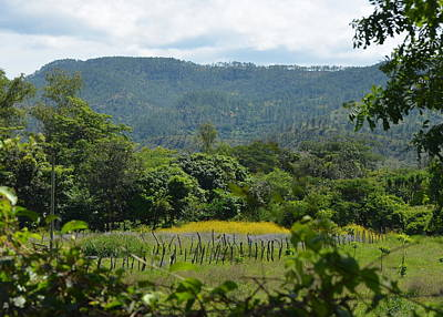 Photograph - Rural Countryside Outside Tegucigalpa Honduras by Carla Parris