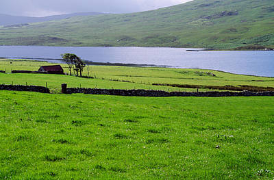Pasture Scenes Photograph - Rural Countryside With Lake, Ireland by Panoramic Images