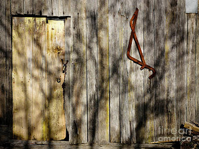 Photograph - Shadows On The Wall by Lexa Harpell