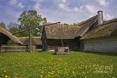 Photograph - Rural Idyl by Inge Riis McDonald