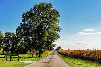 Cornfield Photograph - Rural Indiana by Mountain Dreams
