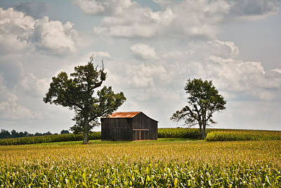 Photograph - Rural Kentucky Barn 2 by Greg Jackson