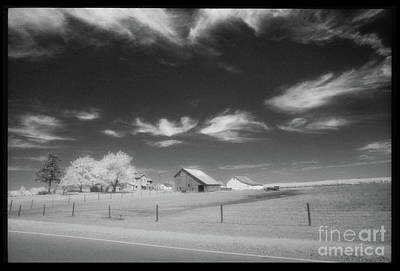 Photograph - Rural Landscape, Black And White Infrared by Greg Kopriva