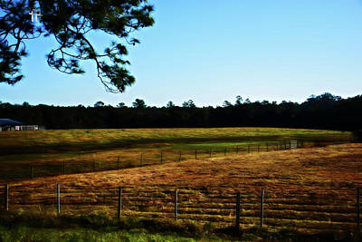 Photograph - Rural Life Landscape by Gina O'Brien