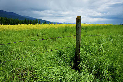 Photograph - Rural Montana by Idaho Scenic Images Linda Lantzy