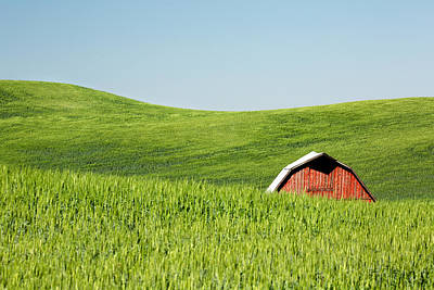 Photograph - Rural Obscura by Todd Klassy