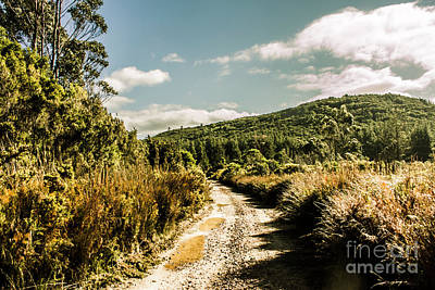 Rural Paths Out Yonder Art Print