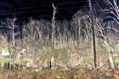 Photograph - Rural Power Lines by Gina O'Brien