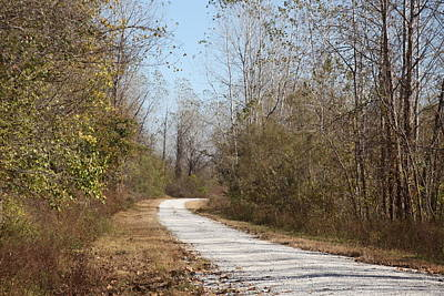 Photograph - Rural Road by Kathy Cornett