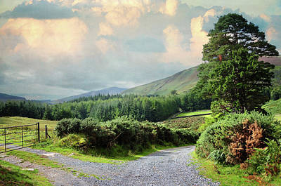 Photograph - Rural Roads Of Wicklow Hills. Ireland by Jenny Rainbow