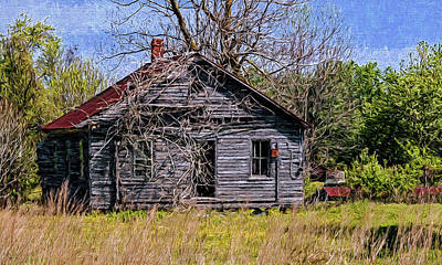 Photograph - Rural Ruins by Jerry Gammon
