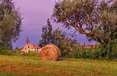 Photograph - Rural Scene In Lombardy by Dmytro Korol
