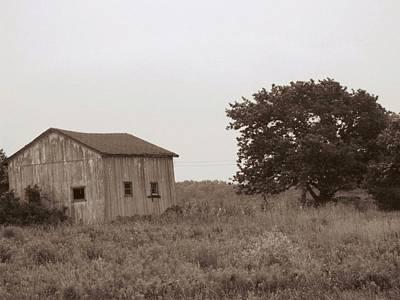 Photograph - Rural Shack by Rhonda Barrett