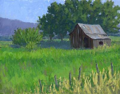 Shed Painting - Rural Spring by David King