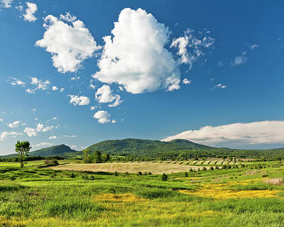 Photograph - Rural Spring Landscape by Alan L Graham