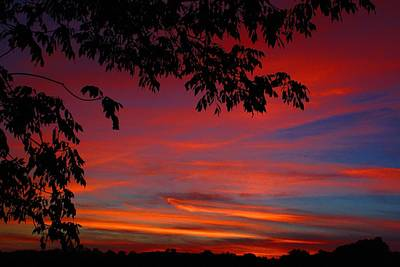 Photograph - Rural Sunset 3 by Kathryn Meyer