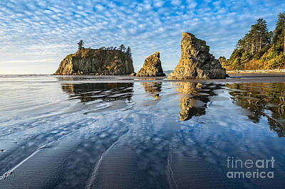 Olympic National Park Photograph - Ruby Beach Reflection by Jamie Pham