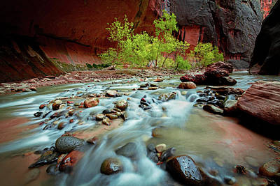 Rush At Narrows Art Print by Edgars Erglis