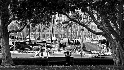 Photograph - Rushcutters Bay by Geoff Payne