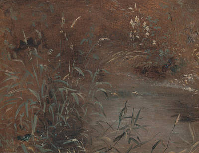 Painting - Rushes By A Pool by John Constable