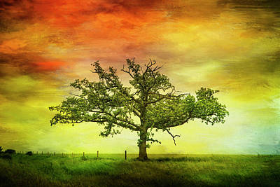 Digital Art - Rushford Tree On 43 by Al  Mueller