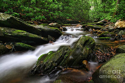 Creek Beds Photograph - Rushing By by Darren Fisher