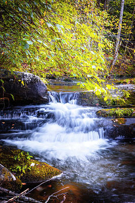 Photograph - Rushing Mountain River by Debra and Dave Vanderlaan