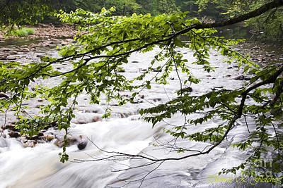 Rushing River Print by Thomas R Fletcher