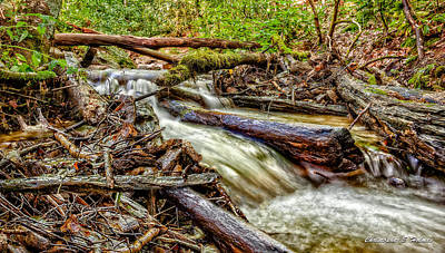 Photograph - Rushing Stream by Christopher Holmes