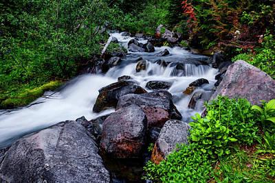 Photograph - Rushing Stream In Mt Rainier National Park by Vishwanath Bhat