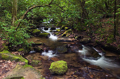 Rushing Stream Through Appalachian Art Print by Panoramic Images