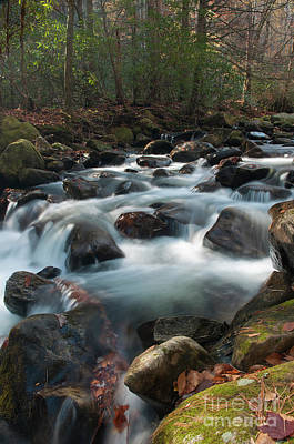 Rushing Waters Art Print