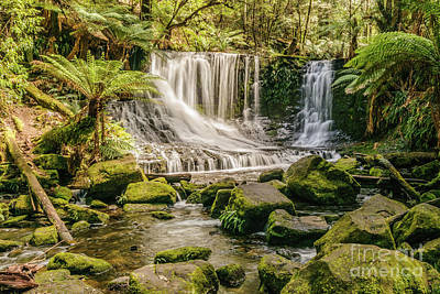 Photograph - Russell Falls by Werner Padarin