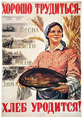 Photograph - Russia: Collective Farm by Granger