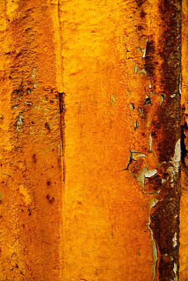 Photograph - Rust Abstract 2 by Lilia D
