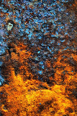 Photograph - Rust Abstract 3 by Lilia D