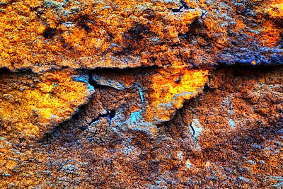 Photograph - Rust Abstract 9 by Lilia D