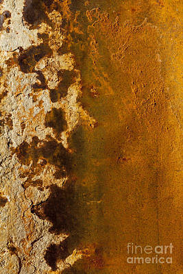 Photograph - Rust Abstract Of Organic Shapes by Sharon Foelz