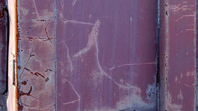 Photograph - Rust And Purple by Anita Burgermeister