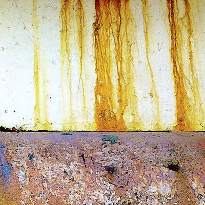 Photograph - Rust by Anne Kotan